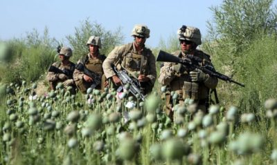 US troops opium field Afghanistan